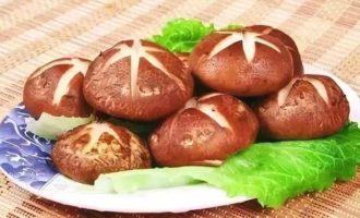 秋冬的菌菇最养人!这7种菇真是营养又美味啊