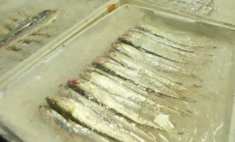 暗访崇明菜场,禁捕后为啥刀鱼为何依旧有售呢?